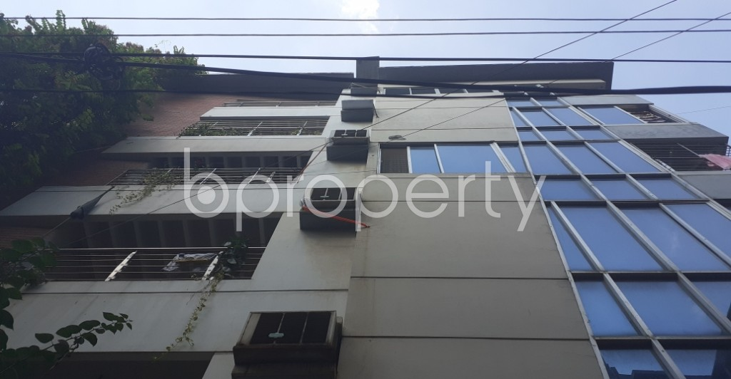 Outside view - 3 Bed Apartment to Rent in Lalmatia, Dhaka - 1942842
