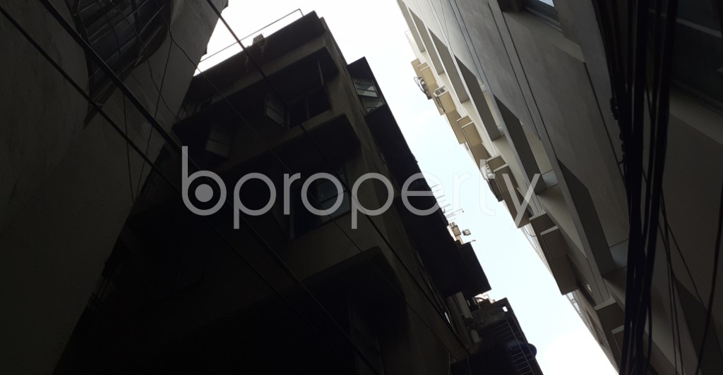 Outside view - 3 Bed Apartment to Rent in Lalmatia, Dhaka - 1943435