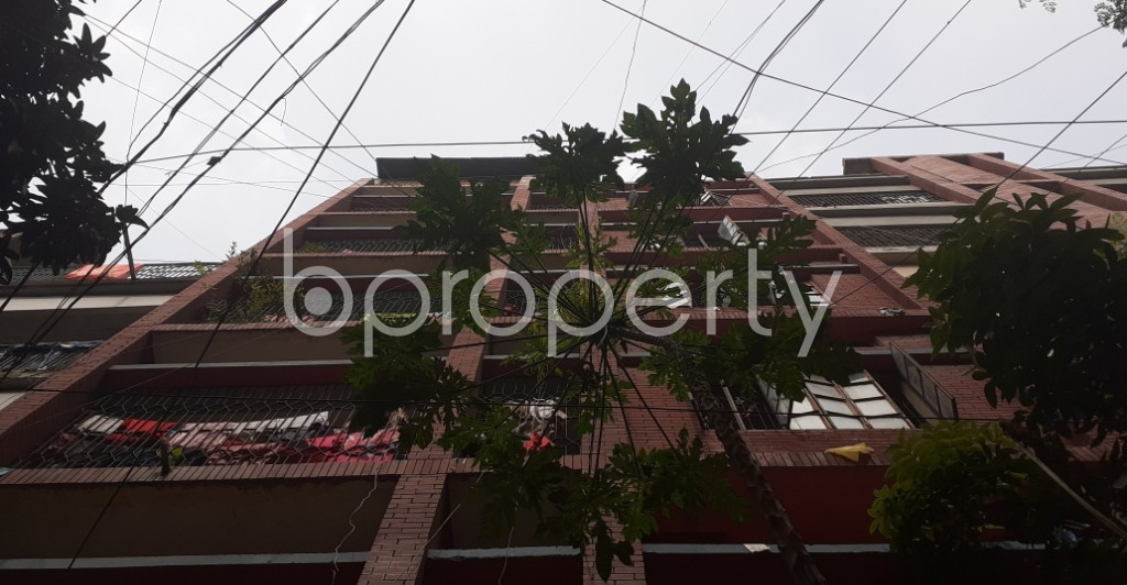 Outside view - 3 Bed Apartment to Rent in Lalmatia, Dhaka - 1944090