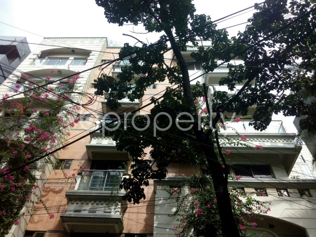 Front view - 3 Bed Apartment to Rent in Banani, Dhaka - 1944433
