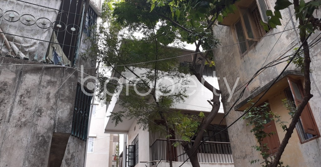 Outside view - 3 Bed Apartment to Rent in Dhanmondi, Dhaka - 1944598