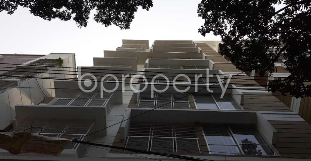 Outside view - 2 Bed Apartment to Rent in Lalmatia, Dhaka - 1950337