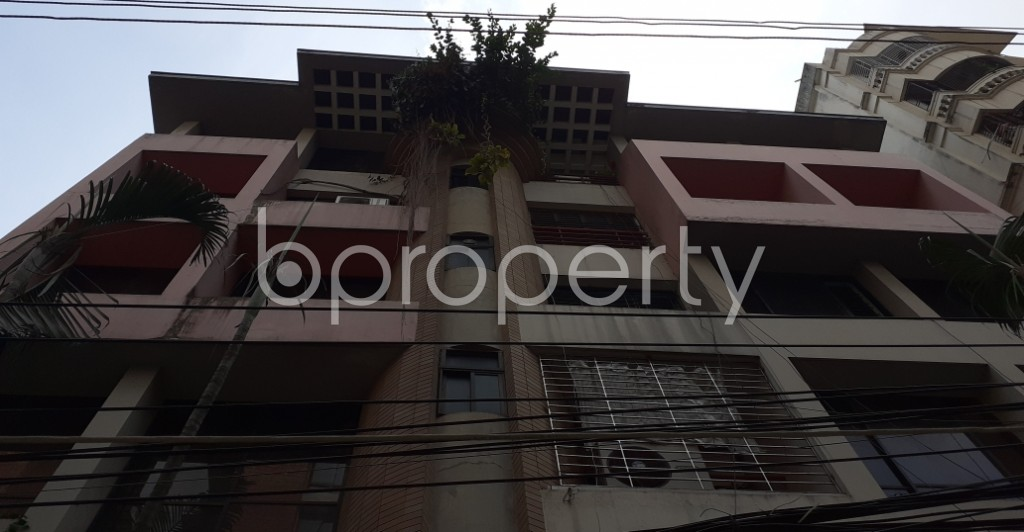 Outside view - 3 Bed Apartment to Rent in Lalmatia, Dhaka - 1952478