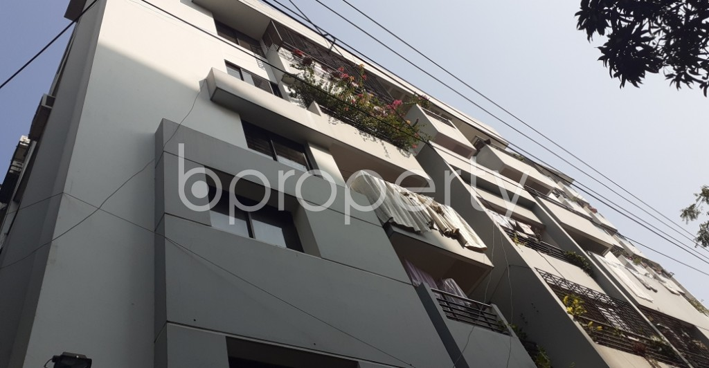 Outside view - 3 Bed Apartment to Rent in Lalmatia, Dhaka - 1953234