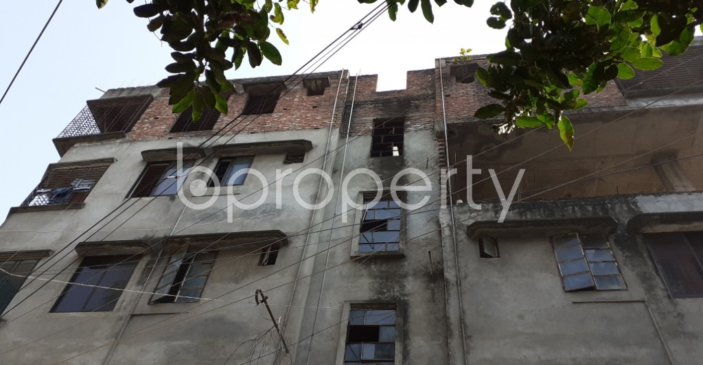 Outside view - 2 Bed Apartment to Rent in Lalmatia, Dhaka - 1953249