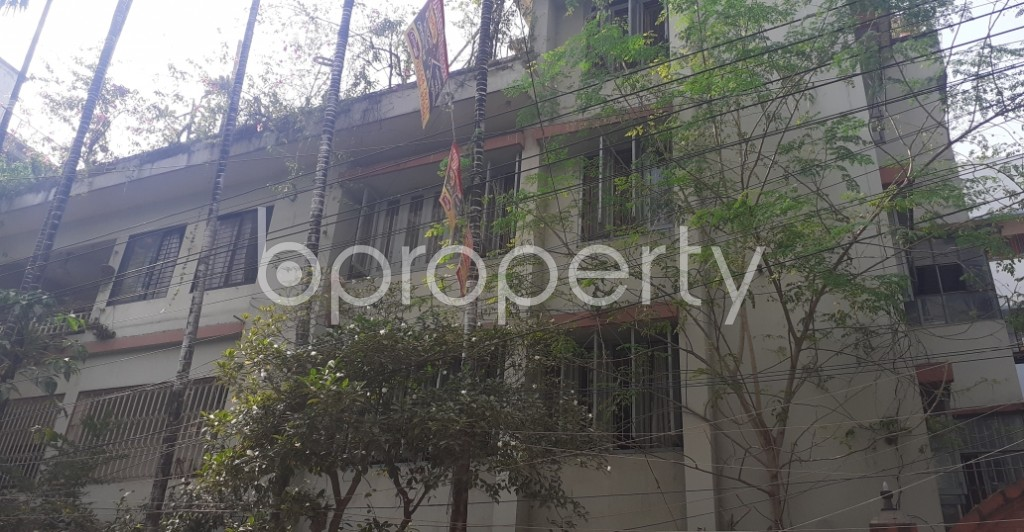 Front view - 4 Bed Apartment to Rent in Mohammadpur, Dhaka - 1955915