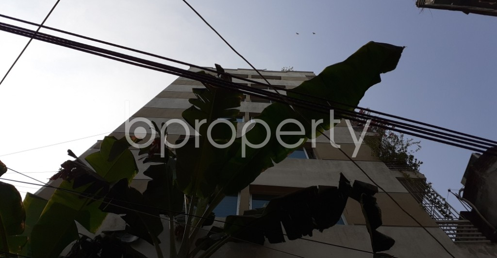 Outside view - 3 Bed Apartment to Rent in Dhanmondi, Dhaka - 1956107