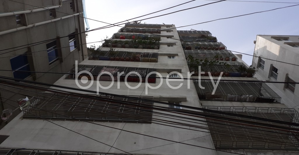 Outside view - 3 Bed Apartment to Rent in Dhanmondi, Dhaka - 1956108