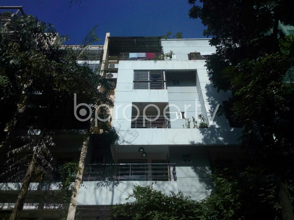 Front view - 3 Bed Apartment to Rent in Banani, Dhaka - 1958704