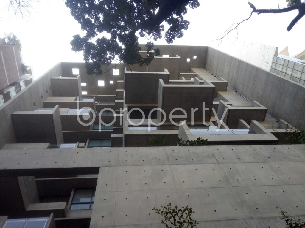 Outside view - 4 Bed Apartment to Rent in Baridhara, Dhaka - 1970724