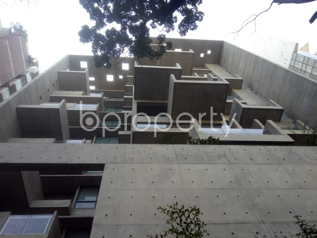 Outside view - 4 Bed Apartment to Rent in Baridhara, Dhaka - 1970722