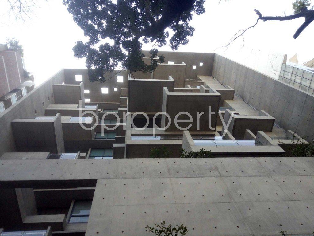 Outside view - 4 Bed Apartment to Rent in Baridhara, Dhaka - 1970725