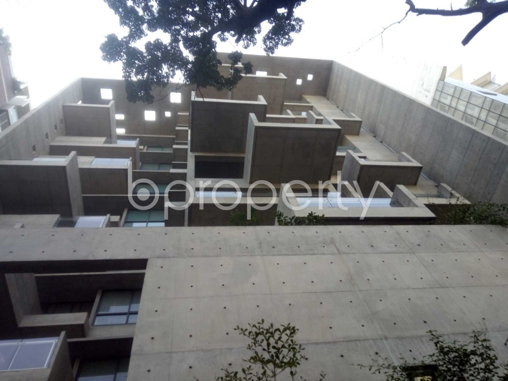 Outside view - 4 Bed Apartment to Rent in Baridhara, Dhaka - 1970726