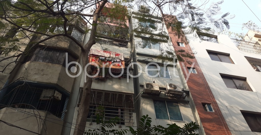Front view - 2 Bed Apartment to Rent in Lalmatia, Dhaka - 1974509