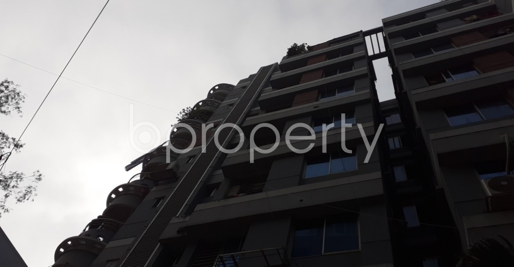 Outside view - 3 Bed Apartment to Rent in Lalmatia, Dhaka - 1975190