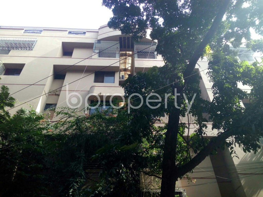 Outside view - 4 Bed Apartment to Rent in Banani, Dhaka - 1975892