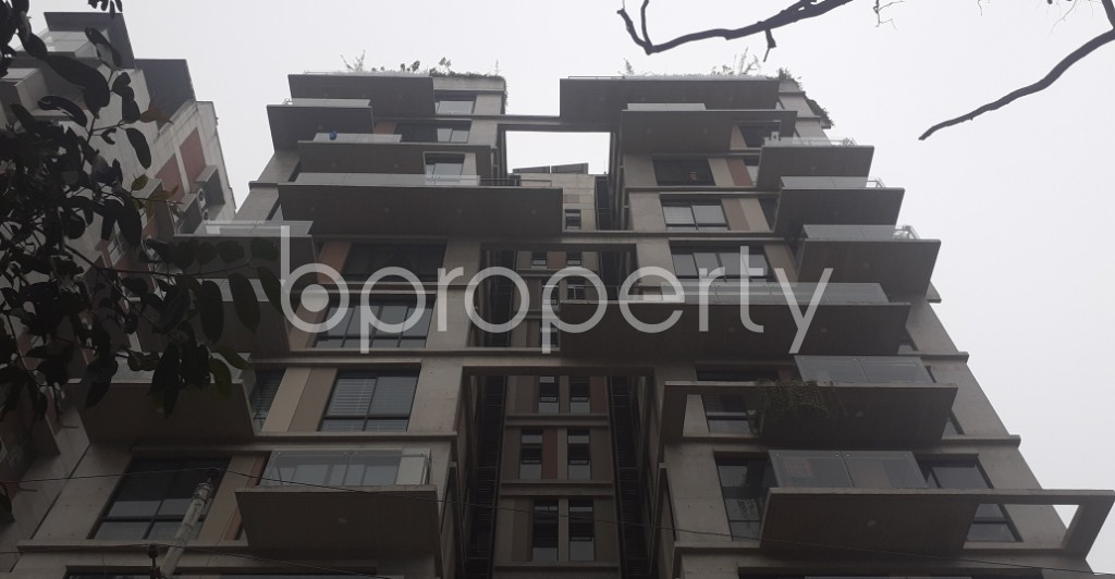 Front view - 3 Bed Apartment for Sale in Dhanmondi, Dhaka - 1977028