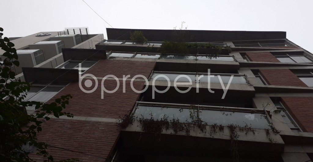 Outside view - 3 Bed Apartment to Rent in Lalmatia, Dhaka - 1977190