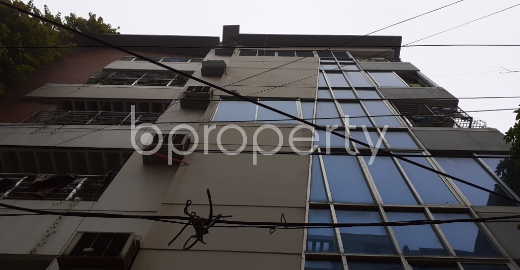 Outside view - 3 Bed Apartment to Rent in Lalmatia, Dhaka - 1977191