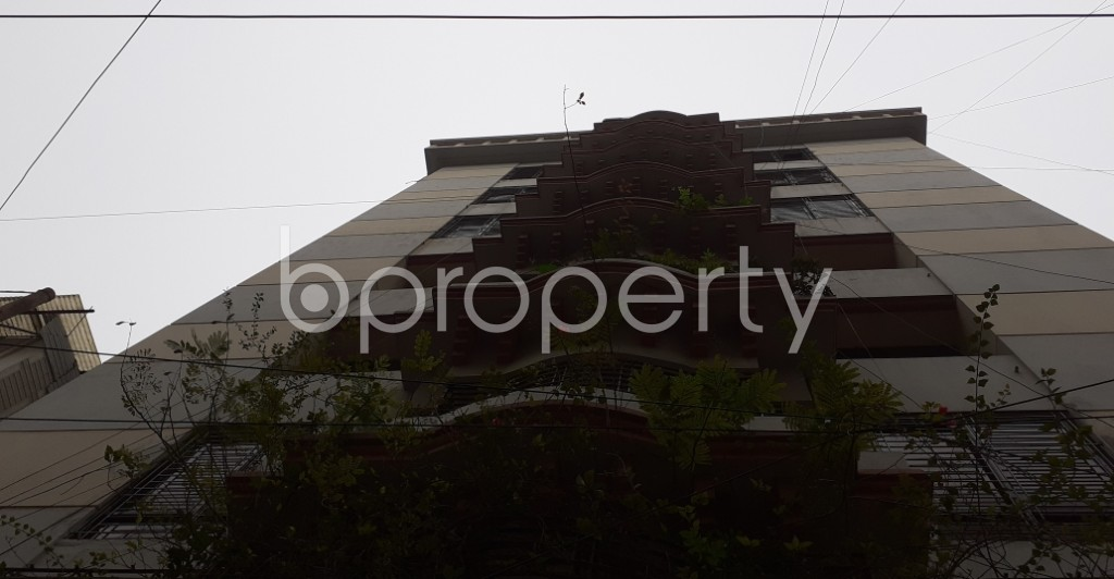 Outside view - 3 Bed Apartment to Rent in Lalmatia, Dhaka - 1977194