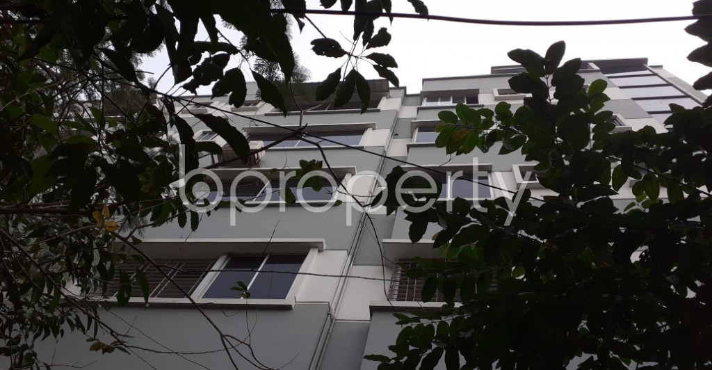 Outside view - 3 Bed Apartment to Rent in Dhanmondi, Dhaka - 1978791