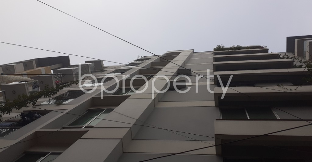 Outside view - 3 Bed Apartment to Rent in Lalmatia, Dhaka - 1985962