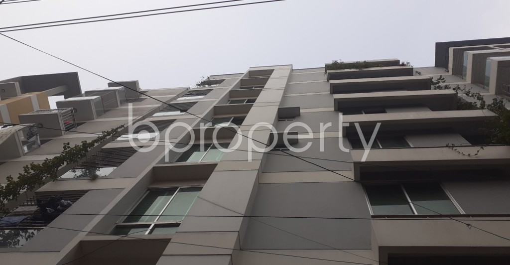 Outside view - 3 Bed Apartment to Rent in Lalmatia, Dhaka - 1985963