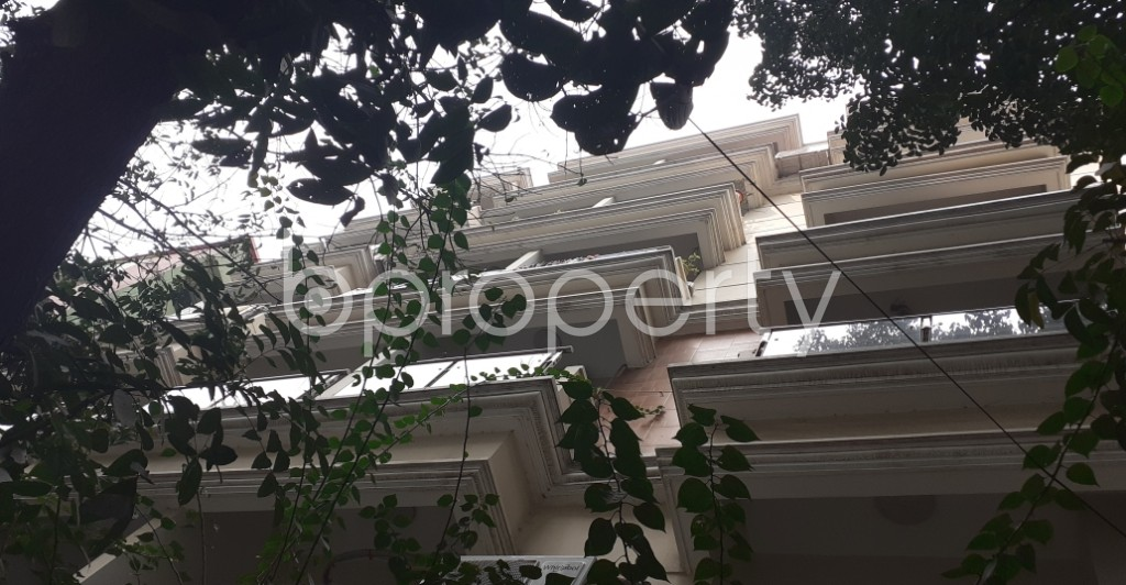 Outside view - 3 Bed Apartment to Rent in Lalmatia, Dhaka - 1985969