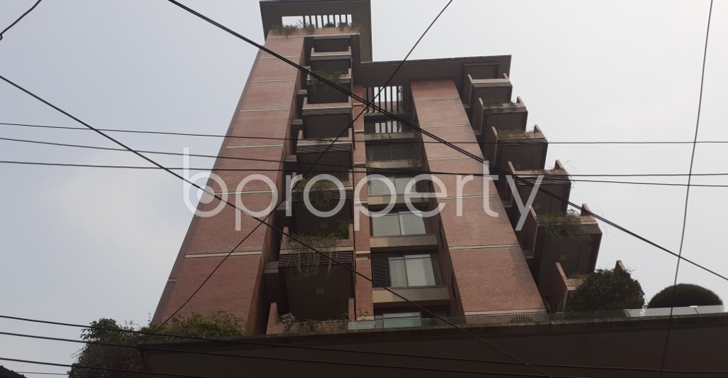 Outside view - 4 Bed Apartment to Rent in Lalmatia, Dhaka - 1985970