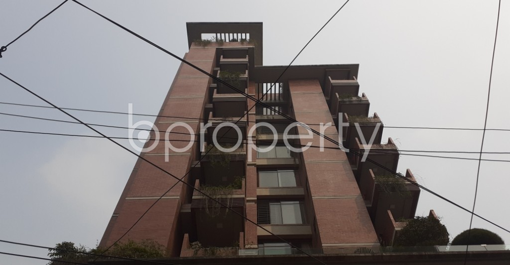 Outside view - 3 Bed Apartment to Rent in Lalmatia, Dhaka - 1985971