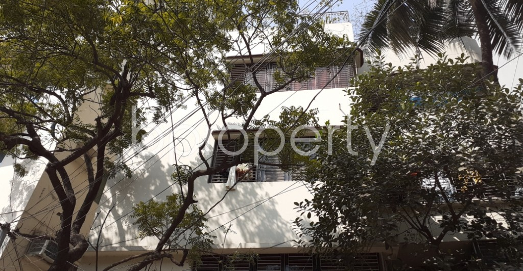Outside view - 2 Bed Apartment to Rent in Lalmatia, Dhaka - 1989658