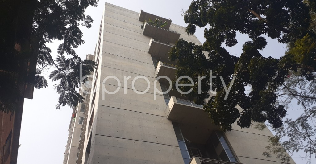 Front view - 4 Bed Apartment for Sale in Gulshan, Dhaka - 1989963