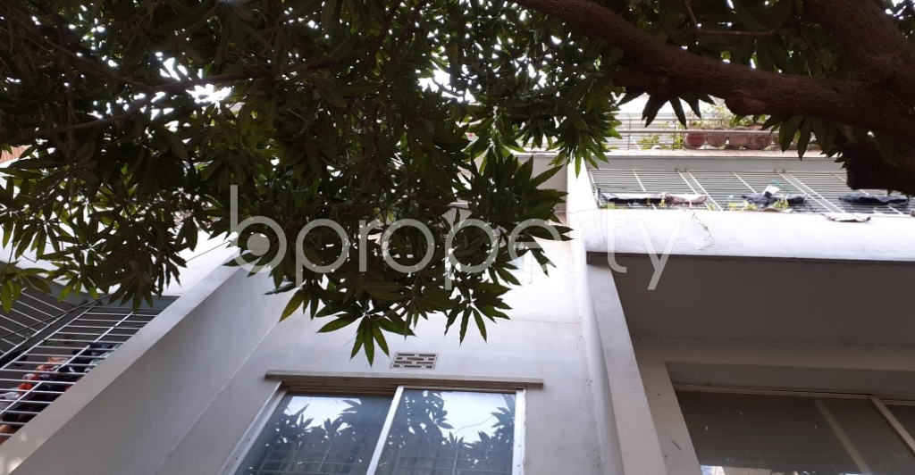 Outside view - 3 Bed Apartment for Sale in Lalmatia, Dhaka - 1991563