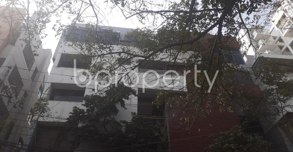 Front view - 3 Bed Apartment to Rent in Dhanmondi, Dhaka - 1994548