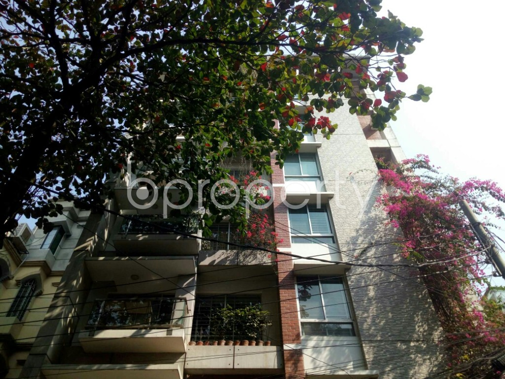 Outside view - 3 Bed Apartment to Rent in Banani, Dhaka - 1994745