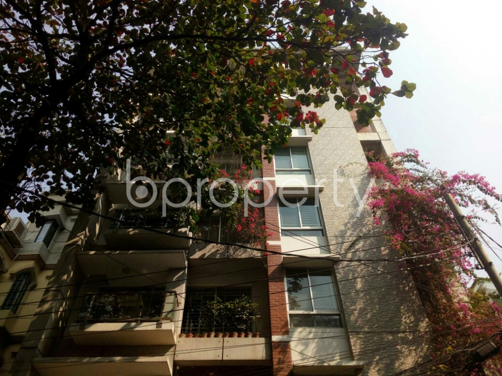 Outside view - 3 Bed Apartment to Rent in Banani, Dhaka - 1994746