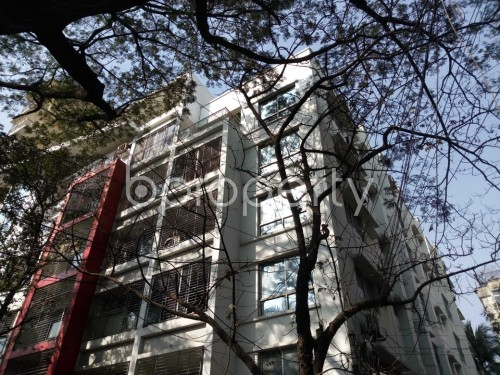 Outside view - 3 Bed Apartment to Rent in Banani, Dhaka - 1855639