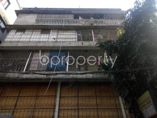 Front view - 3 Bed Apartment to Rent in Lalmatia, Dhaka - 1856042