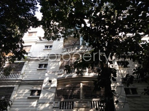Front view - 3 Bed Apartment to Rent in Gulshan, Dhaka - 1858292