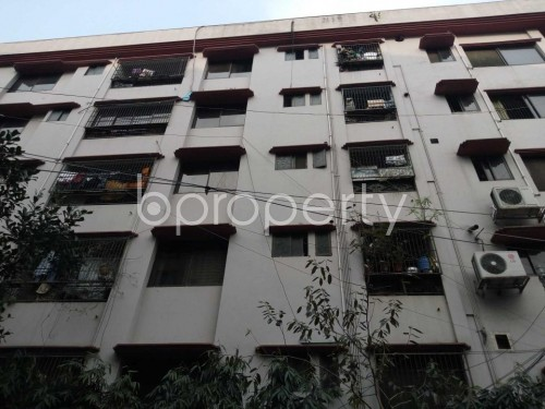 Front view - 3 Bed Apartment to Rent in Lalmatia, Dhaka - 1859957