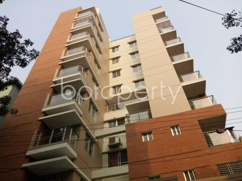 Front view - 3 Bed Apartment to Rent in Lalmatia, Dhaka - 1859980