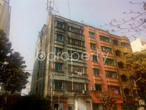 Outside view - 2 Bed Apartment to Rent in Mirpur, Dhaka - 1860344